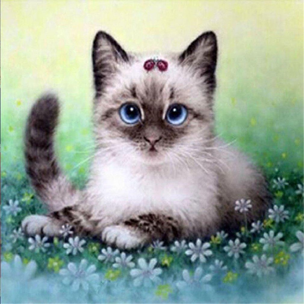 YEESAM ART New 5D Diamond Painting Kit - Big Eye Cat - DIY Crystals Diamond Rhinestone Painting Pasted Paint by Num