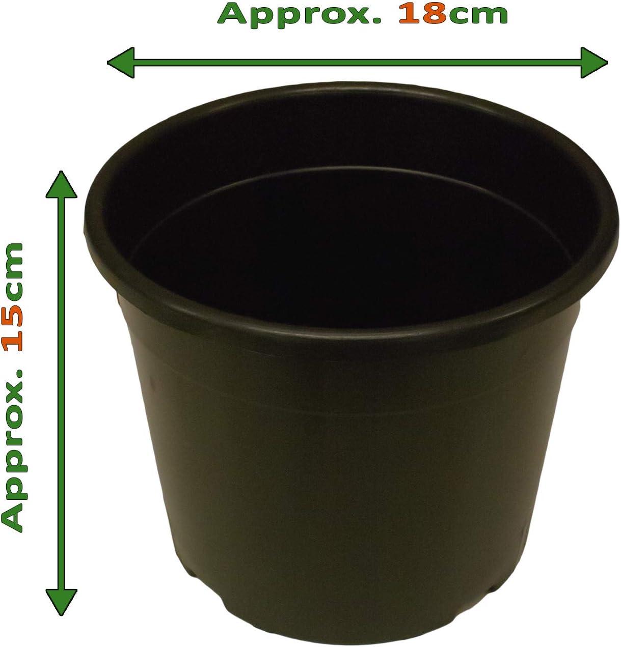 50 used 2 litre round black plastic plant // flower pots Medium Weight 16 cm