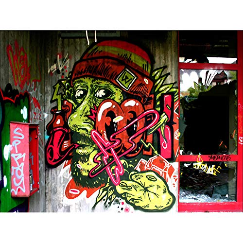 PHOTOGRAPHY GRAFFITI MURAL STREET WALL LOOK PIPE SMOKE 18X24'' POSTER ART PRINT LV10826