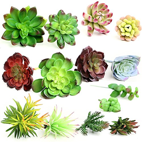 20Pcs- Plastic Different Mini Succulents, Artificial Cactus Plant