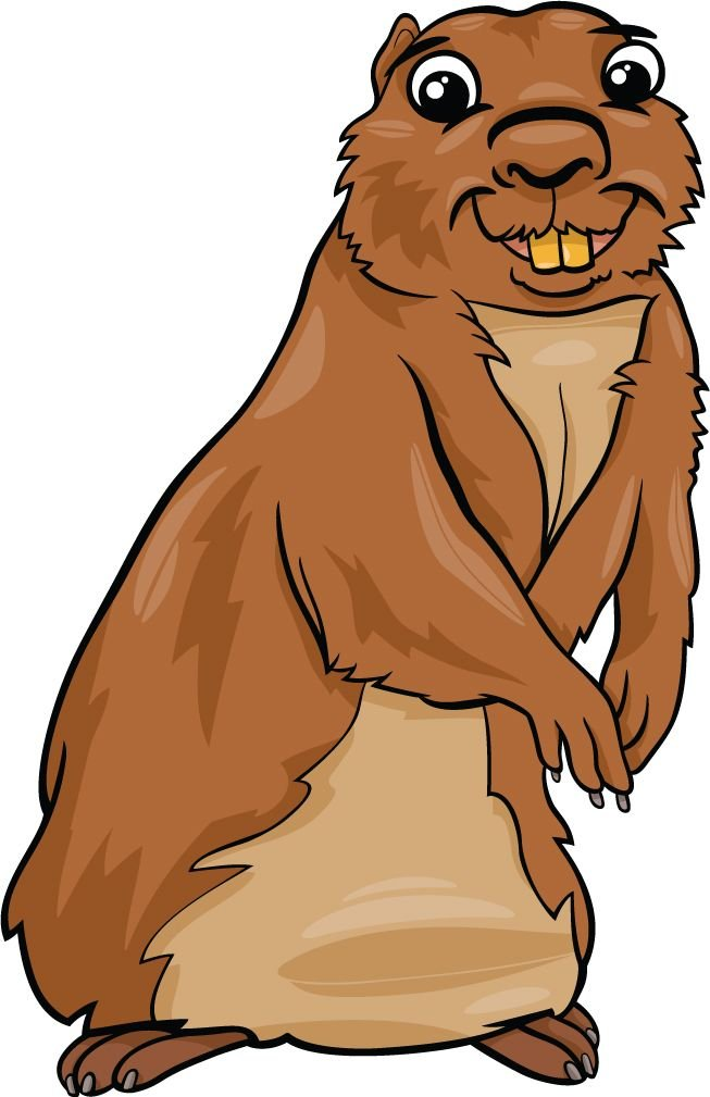 Funny Gopher Animal Home Decal Vinyl Sticker 9'' X 14''