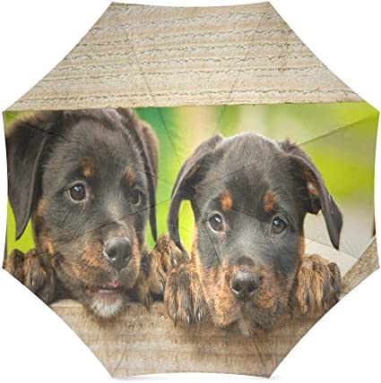 Custom Cute Rottweiler puppy dog Compact Travel Windproof Rainproof Foldable Umbrella