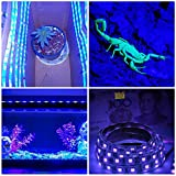 UV Light Strip - iCreating 2018 New Design