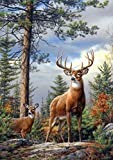Best Buffalo Games Games For Adults - Buffalo Games Large-Piece Family Standing Proud, 300-Piece Jigsaw Review
