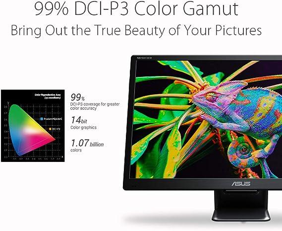 Asus ProArt PQ22UC - Monitor portátil Ultra Delgado 4K (3840 x 2160) HDR OLED Delfín E<2 0,1 ms USB Type-C Micro HDMI Dolby Vision HDR10 Hlg Cuidado de los Ojos: Amazon.es: Electrónica