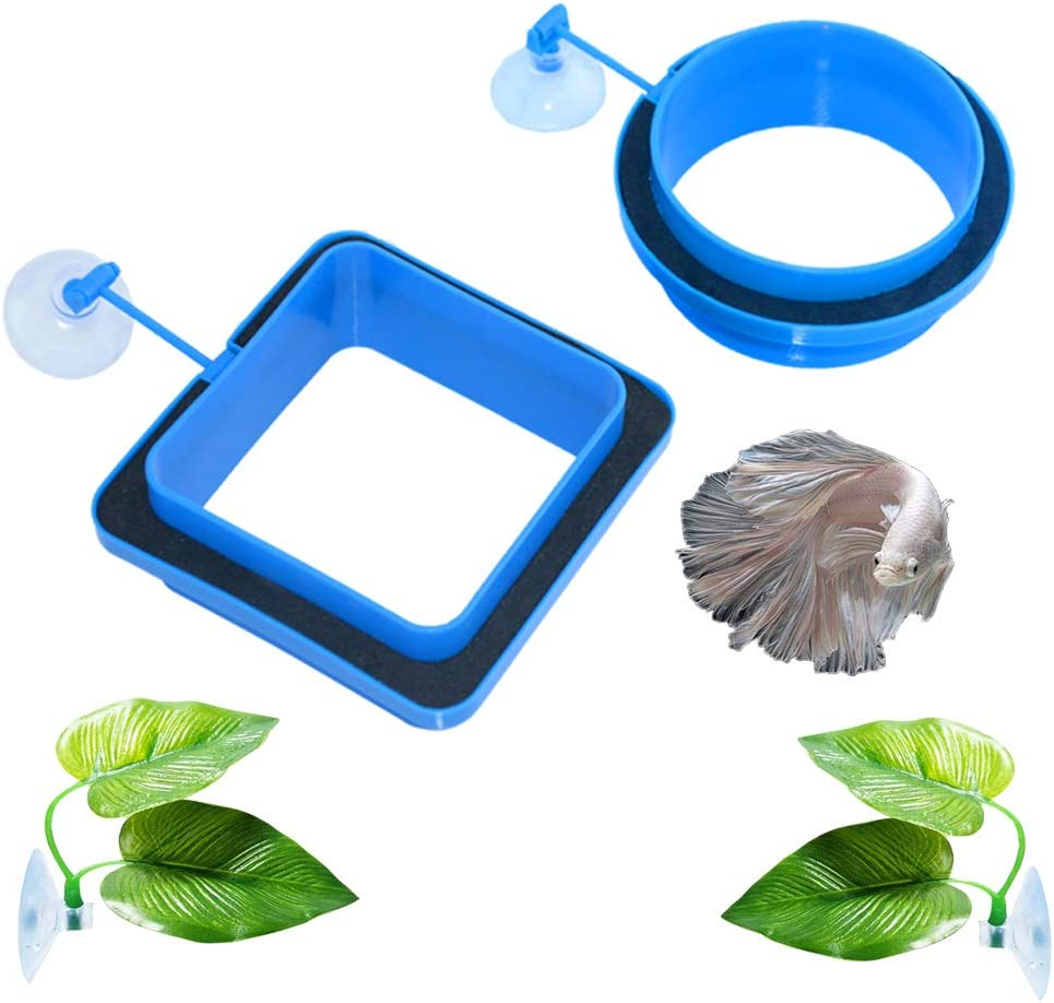 TEEMO Betta Bed Leaf Hammock with +Fish Feeding Ring, Betta Fish Leaf Pad - Improves Betta's Health by Simulating The Natural Habitat and Providing Safe Floating Food Feeder Circle. Value Pack 4 in 1