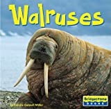 Walruses, Connie Colwell Miller, 0736843132