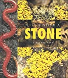 Life under a Stone, Janet Halfmann, 1583410759