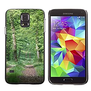 Hot Style Cell Phone PC Hard Case Cover // M00307341 Path Forest Nature Trees Landscape // Samsung Galaxy S5 S V SV i9600 (Not Fits S5 ACTIVE)