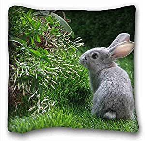 Custom Animal Custom Zippered Pillow Case 16x16 inches(one sides) from Surprise you suitable for X-Long Twin-bed