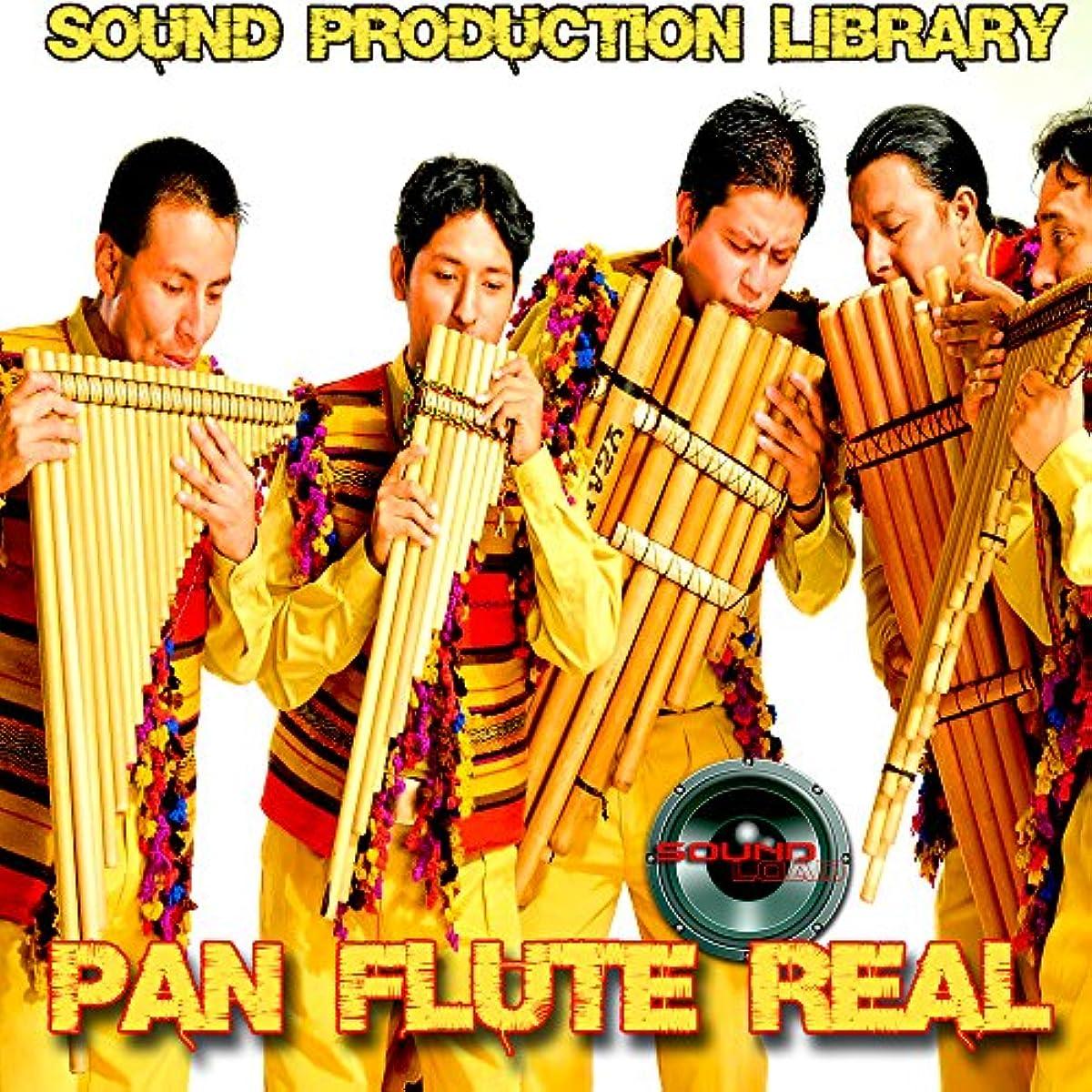 [해외] PAN FLUTE REAL - HUGE UNIQUE ORIGINAL 24BIT MULTI-LAYER SAMPLES LIBRARY ON 2 DVD OR FOR DOWNLOAD