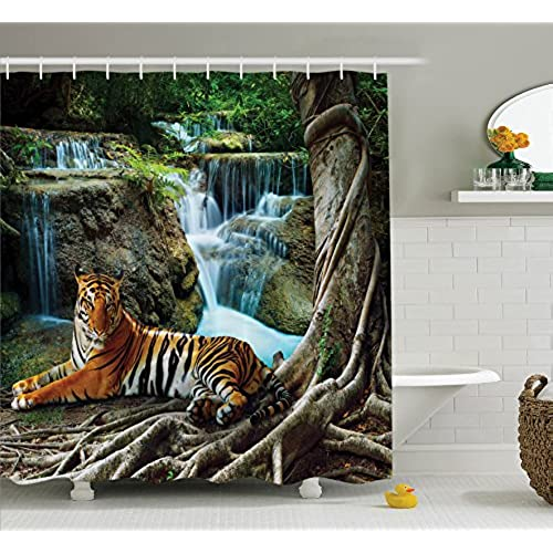 interiors ideas some decorating pinspired add decor accents home globally size room south african safari adventure medium
