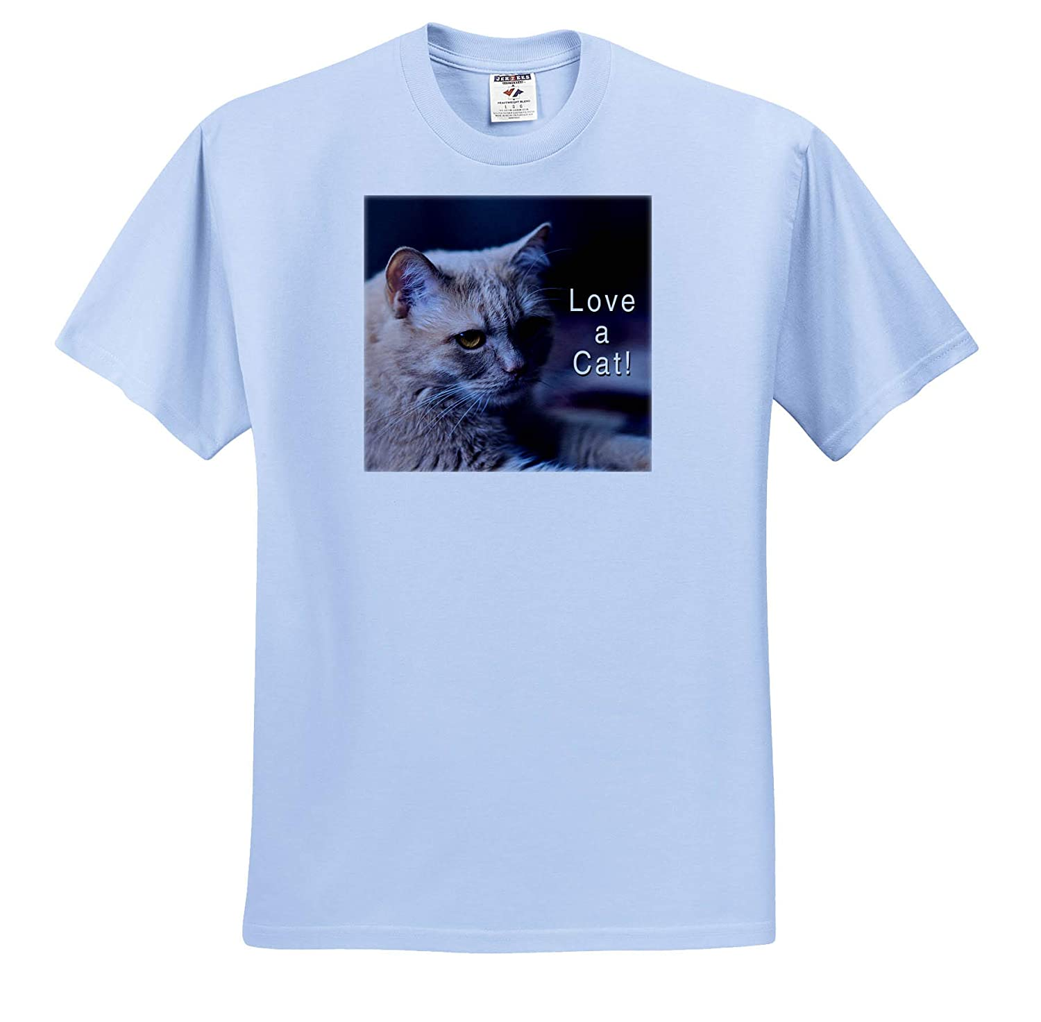 3dRose Alexis Photography Adult T-Shirt XL ts/_310486 Love a cat Slogan Animals Cats Adorable Ginger cat