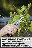 Corona Long Straight Snip, Stainless Steel, AG