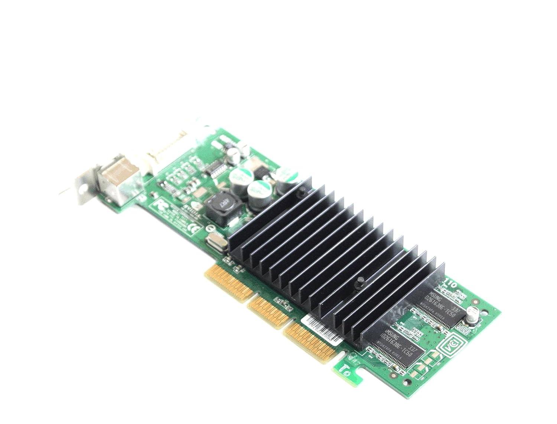 Amazon.com: Genuine Dell P117 ordenador tarjeta de vídeo ...