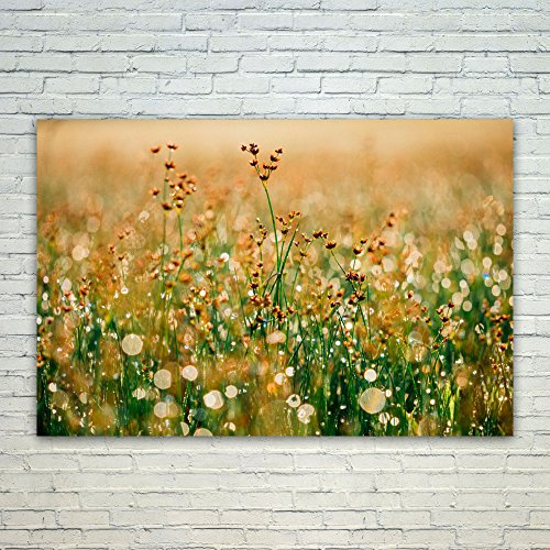 Westlake Art Field Nature - 12x18 Poster Print Wall Art - Modern Picture Photography Home Decor Office Birthday Gift - Unframed 12x18 Inch (9C1E-19670) (Est Lighting Outdoor)