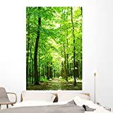 Wallmonkeys Green Forest Wall Mural by Peel and Stick Graphic (72 in H x 48 in W) WM196656