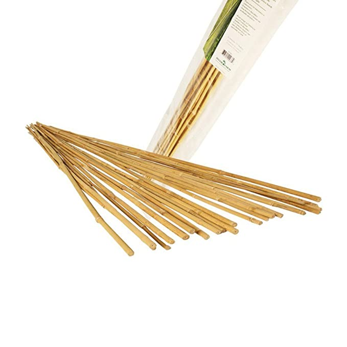 Hydrofarm HGBB4 4' Natural Bamboo Stake, Pack of 25