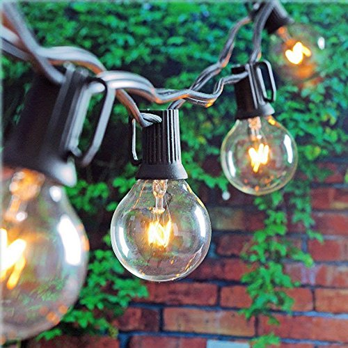 Best Outdoor Cold Weather Light Bulb in US - 1
