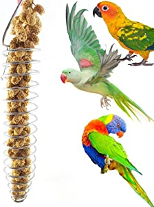 Heaven2017 Spiral Birds Feeder, Stainless Steel Millet Treat Fruit Holder for Parrot