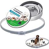 Klinkamz - Collares de pulgas y garrapatas para Perros, Gatos, 8 Meses de protección, Anti Insectos, Impermeables,…