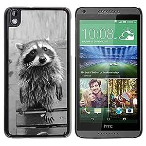 TopCaseStore / la caja del caucho duro de la cubierta de protección de la piel - Cute Funny Raccoon - HTC DESIRE 816