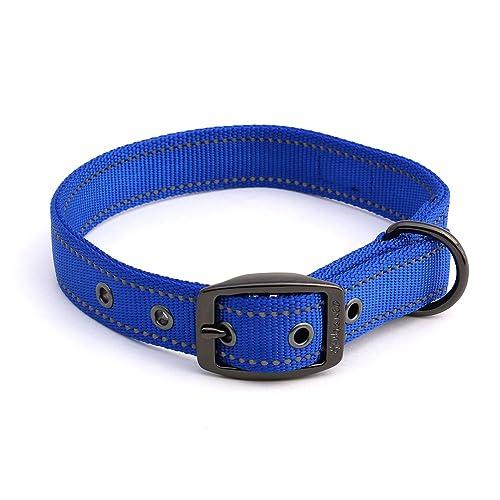 Extra Heavy Duty Dog Collars: Amazon.com