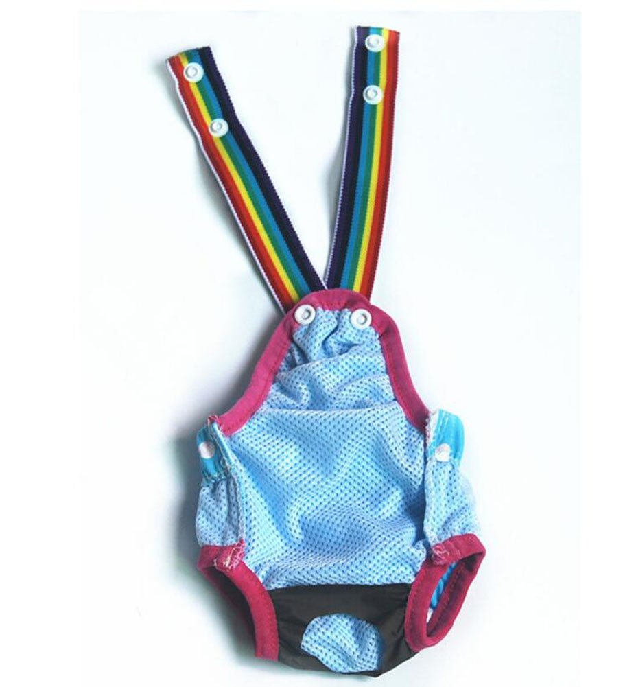 Ylen Puntos Perros Higiene Pantalones Sanitarios Menstruales Bragas Fisiológico Del Pañal: Amazon.es: Deportes y aire libre