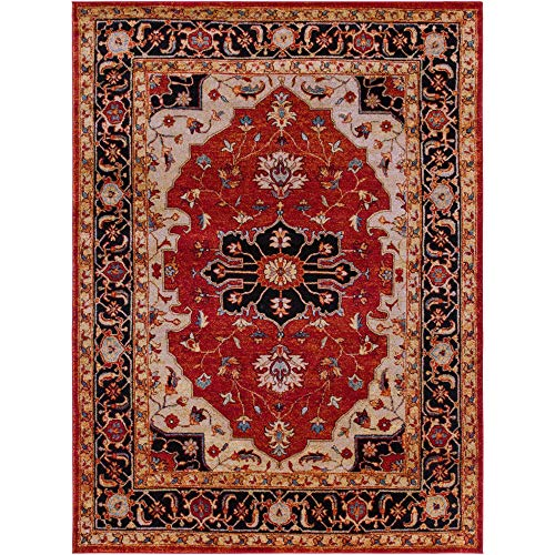 (Tiwari Home 7.8' x 10.5' Currant Red and Black Persian Patterned Rectangular Area Throw Rug )