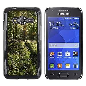 Smartphone Rígido Protección única Imagen Carcasa Funda Tapa Skin Case Para Samsung Galaxy Ace 4 G313 SM-G313F Forrest Sun / STRONG