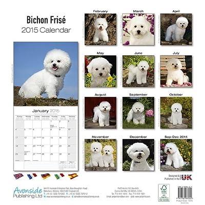 Bichon-Frise-Calendar-Breed-Specific-Bichon-Frise-Calendar-2015-Wall-calendars-Dog-Calendars-Monthly-Wall-Calendar-by-Avonside-Calendar–July-1-2014