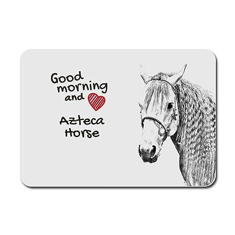 bd5871044fd Azteca cavallo