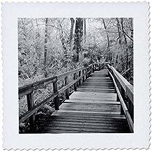 3dRose Danita Delimont - Florida - Florida, Fakahatchee Strand Preserve, Big Bend Board Walk. Infrared. - 12x12 inch quilt square (qs_250731_4)