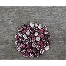Shelling Bean (Pole) - Good Mother Stallard - 25 seeds