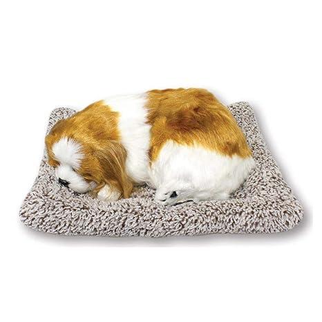 Amazon.com: Lovely Pet Dolls - Purificador de aire para ...