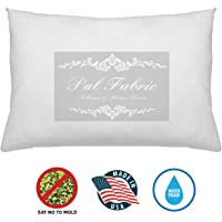 Pal Fabric Outdoor Anti-Mold Waterproof Square Sham Pillow Insert Made in USA (14x18)