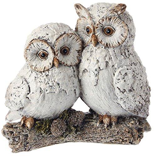 White Snowy Owl Couple