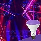 2 Pack UV LED Black Light Bulbs,13W BR30 E26