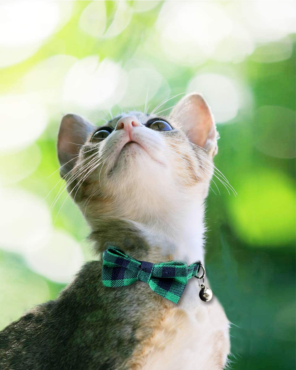 1 Pack Kitty Safety Collars Joytale Quick Release Cat Collar with Bell and Bow Tie Cute Plaid Patterns Black