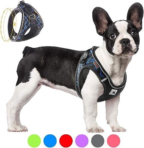 Bororo - Arnés para perro cómodo y fácil de poner, arnés para ...