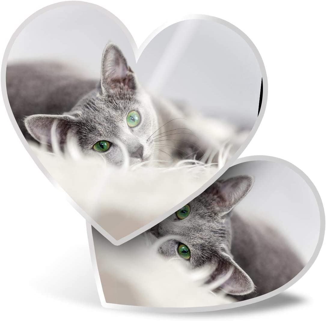 Awesome 2 x Heart Stickers 7.5 cm - Russian Blue Cat Kitten Pet Fun Decals for Laptops,Tablets,Luggage,Scrap Booking,Fridges,Cool Gift #2605