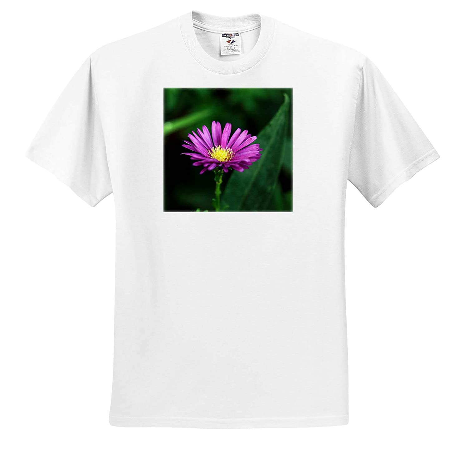 Macro Photograph of a Purple Aster in Full Bloom 3dRose Stamp City - Adult T-Shirt XL Flowers ts/_320119