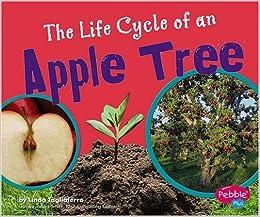 Descargar It En Torrent The Life Cycle Of An Apple Tree PDF Gratis En Español