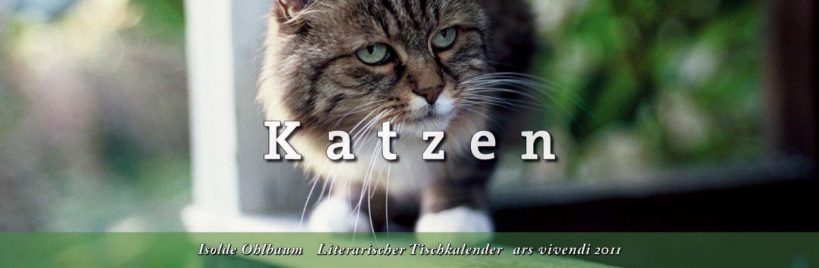 Tischkalender Katzen 2011 - Kalender