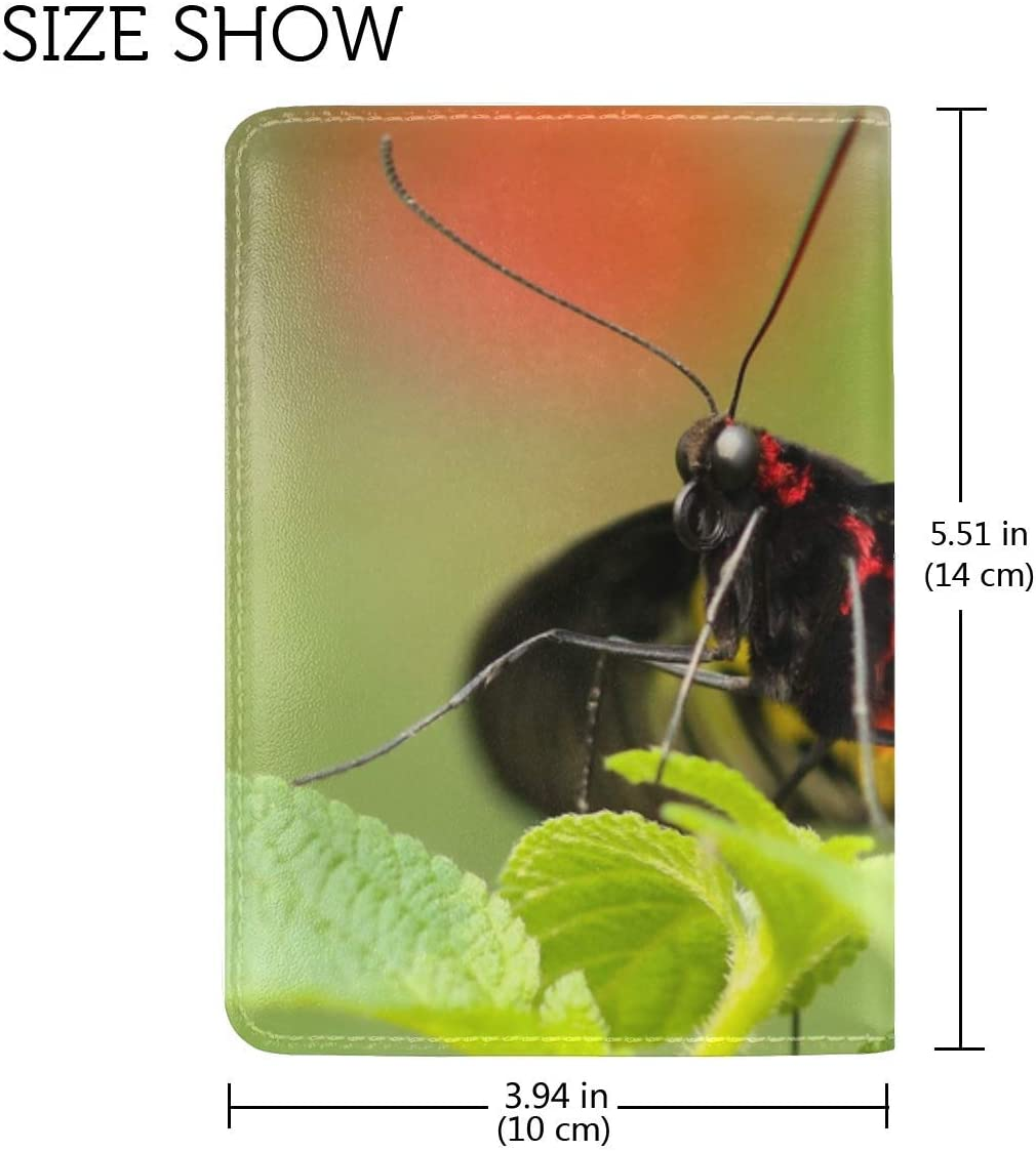 JiaoL Butterfly Colorful Close Up Leather Passport Holder Cover Case Travel One Pocket