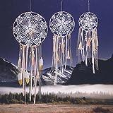 CHICIEVE 3Pcs Boho Decor Dream Catcher Feather Kit Tassels Girls Home Wedding Hanging Wall Decor