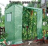 BenefitUSA Tomato Green House Plant Outdoor Planting Greenhouse Gardening Warm Hot Garden Review