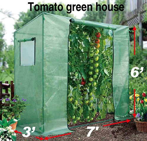 BenefitUSA Tomato Green House 7'X3'X6′ plant Outdoor Planting Greenhouse Gardening warm hot Garden