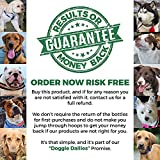 Doggie-Dailies-Glucosamine-for-Dogs-225-Soft-Chews-Advanced-Hip-and-Joint-Supplement-with-Glucosamine-Chondroitin-MSM-Hyaluronic-Acid-and-CoQ10-Premium-Joint-Relief-for-Dogs-Made-in-the-USA