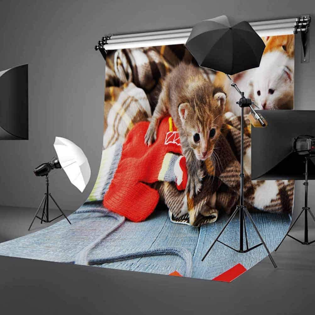 Cats 10x15 FT Photo Backdrops,Kittens and Mittens Newborns Baby Animals in an Plain Blanket Wood Play Toys Adorable Background for Photography Kids Adult Photo Booth Video Shoot Vinyl Studio Props